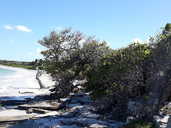 Jabberwock Beach: looking at the beach from the left side