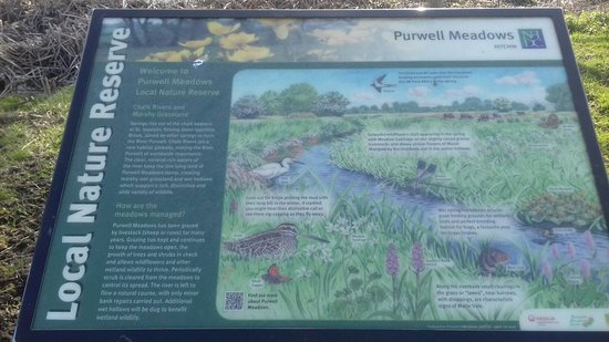 Purwell Meadows Nature Reserve.