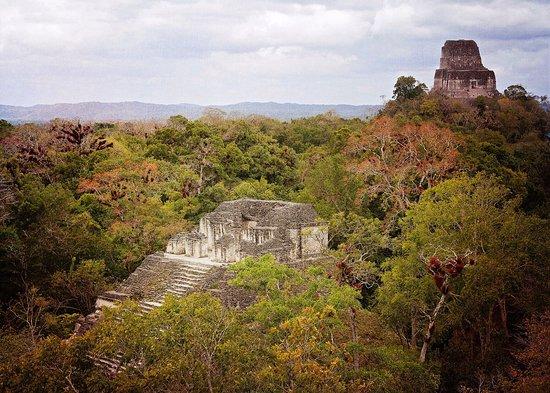 Tikal National Park, Guatemala: Tikal