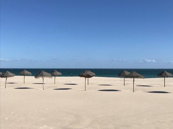 Bahia Beach Bar: bahia beach concession at beautiful Meia Praia