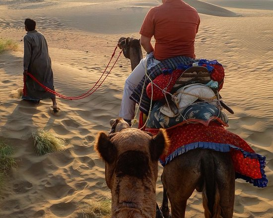 Unique Adventures Travel and Tourism: It was first time to have camel ride in my life, how ever i could not capture myself but it was fun