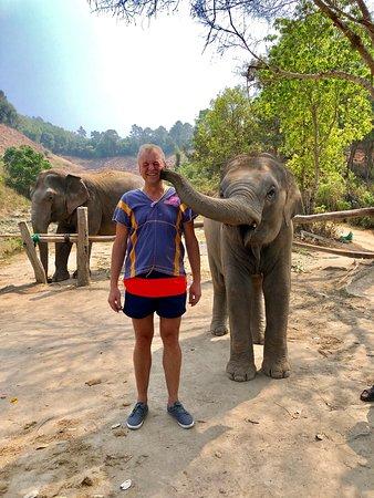 Elephants kisses 😘