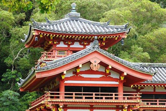 Uji徒步游与京都的茶道