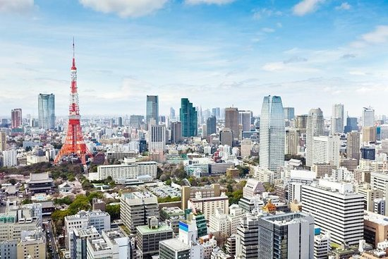 東京タワー、茶の湯、隅田川クルーズの1日ツアー