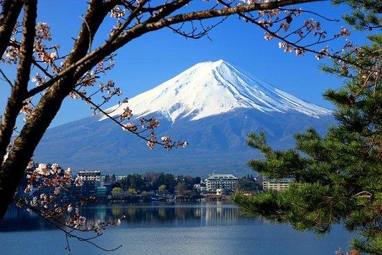 Viagem diurna ao Monte Fuji incluindo...