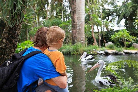 Attica Zoologisk Park med valgfri...