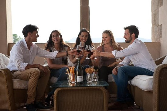 Penedes Wineries Small Group Tour with...