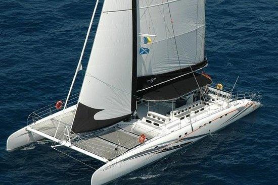 Western Tenerife Cruise including...