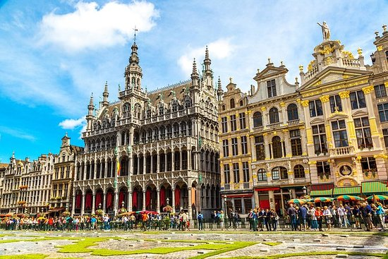 Privat tur: Brussel sightseeingtur...