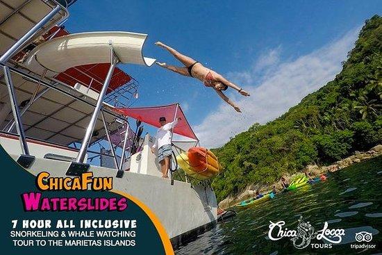 Marietas群岛的全包式浮潜之旅