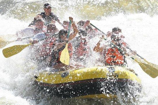 Viaje de medio día de rafting en...