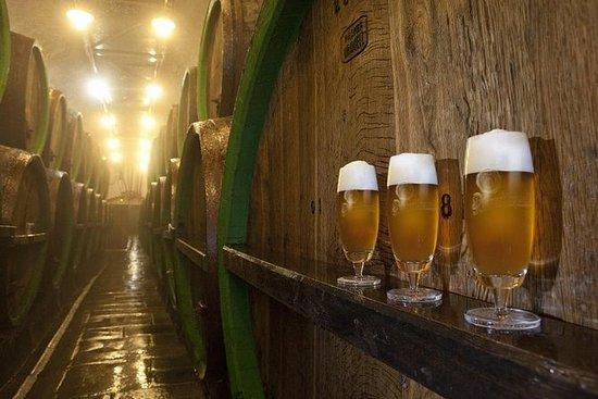 Pilsen重点介绍小团体旅游和Pilsner啤酒厂之旅,包括午餐和啤酒品尝