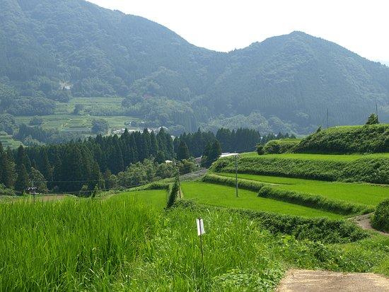 Tochimata Tanada Rice Terrace