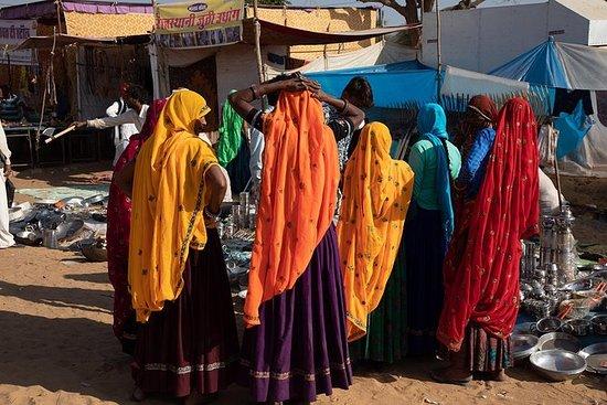 Visite du même jour de Pushkar au...