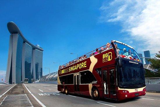 Big Bus Hop-On Hop-Off Tour med...
