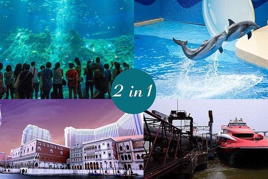E-Ticket Combo: Hong Kong Ocean Park plus 2-Way HKG to Macau Turbojet Tickets