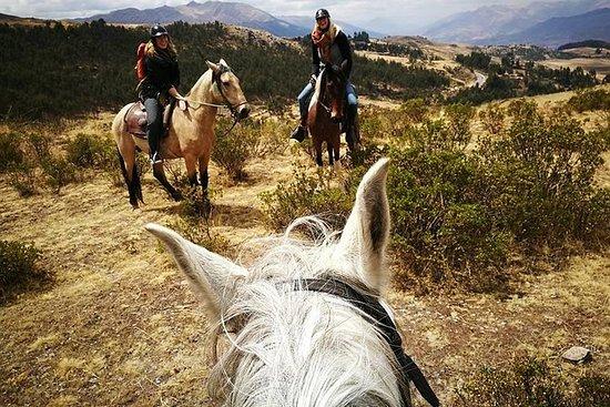 骑马4个考古遗址