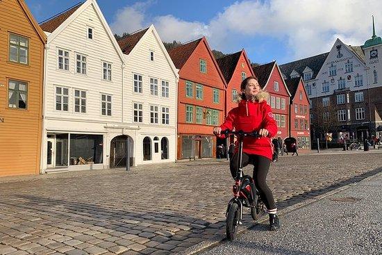 私人旅游:电动自行车卑尔根海岸线(可选船)