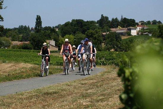 E-Bike tur til Amboise, Clos-Lucé og...