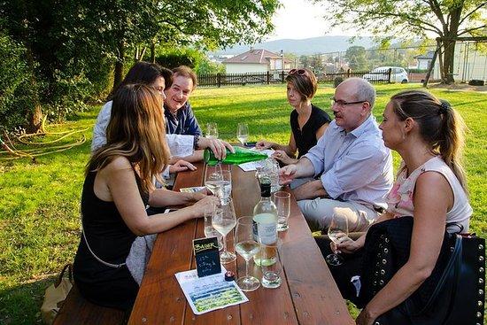 Halvdagers Landlig Vin Tour i...