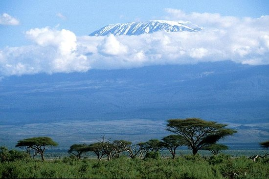 Amboseli National Park Private Day Tour...