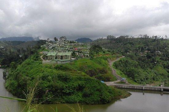 Sinharaja Rain forest tours