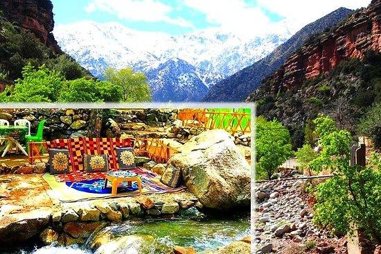 Excursões ao Vale Ourika