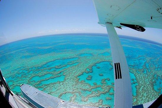 最佳的降灵岛水上飞机之旅,包括怀特黑文海滩登陆