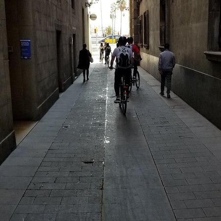 Great way to see Barcelona. Friendly guides.