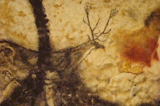 波尔多到多尔多涅河谷 - 私人观光旅游:拉斯科洞穴,城堡