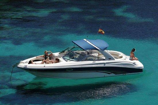 Private boat trip from Puerto Banus (Marbella)