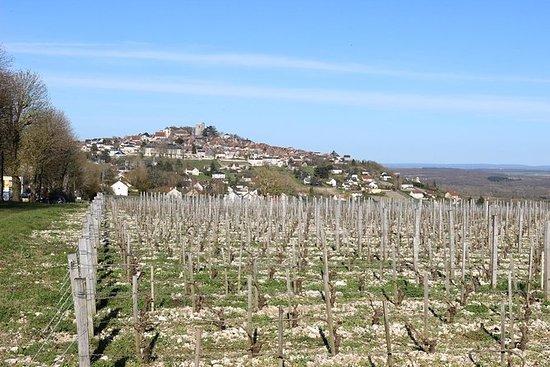 The Sauvignon blancs of Sancerre and...