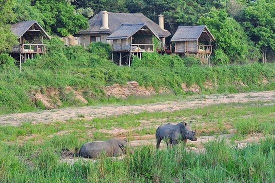 4 jours Jock Safaris Lodge - Parc...