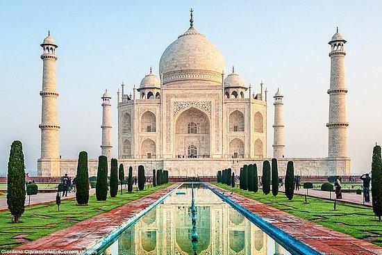 Agra Tour med Taj Mahal och Fort med ...