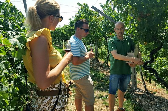 Amarone Wine Tour (all-inclusive hel...