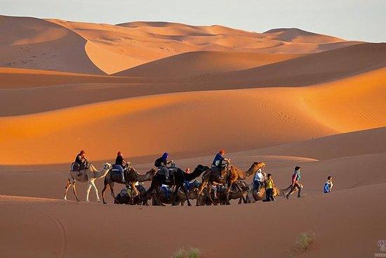 Tour di 3 giorni nel deserto di