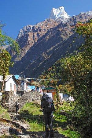 Annapurna Region, Nepal: Annapurna Trek