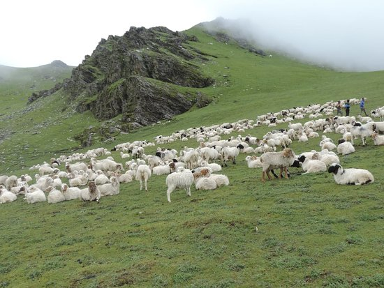 Dhorpatan Hunting reservation
