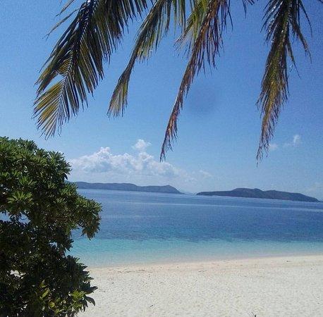 the shore of Black Island (photo by Ngozi Osiri)