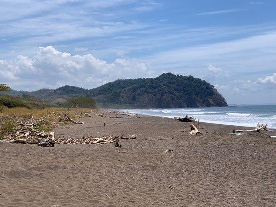 Playa Camaronal, Costa Rica: The beach