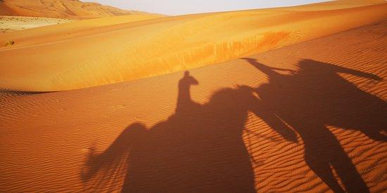 Pferdereiten in der Wüste