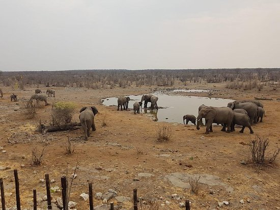 Motema Tours and Safaris Namibia