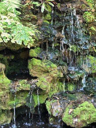 McKee Botanical Garden Photo