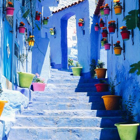 love chefchaouen tours
