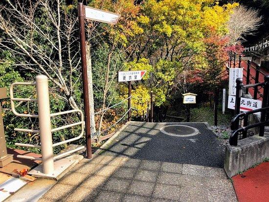 Michi-noEki Kiri no Mori: 霧の森