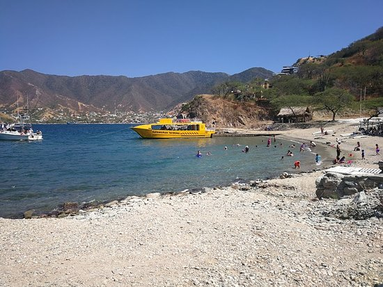 Taximarino