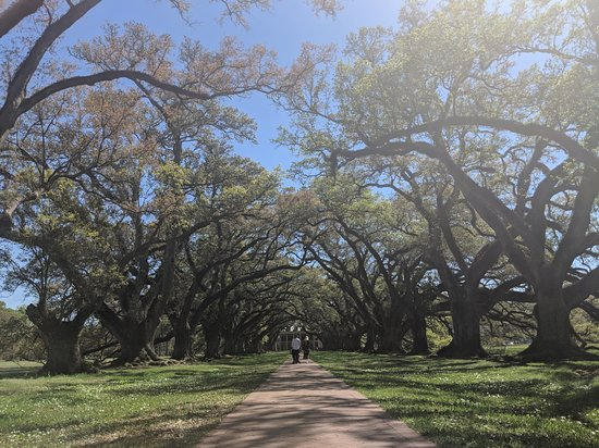 Double Plantation Tour in New Orleans: View to the main house