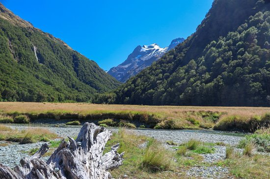 Routeburn Track 1 Day Hiking: ルートバーンフラット1