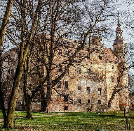 Castle in Głogówek