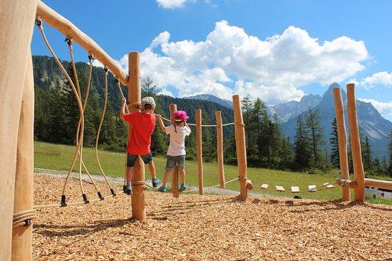 Sommer auf der Gamsalm – Gamsalm Ehrwald, Ehrwald fényképe - Tripadvisor